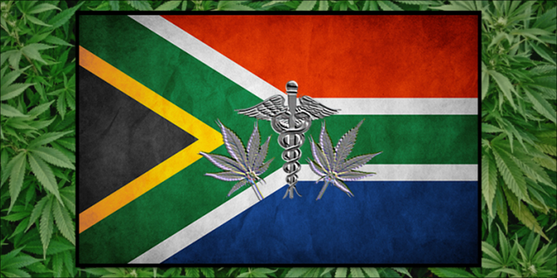 post-image-South Africa Just Gave Medical Cannabis The Green Light