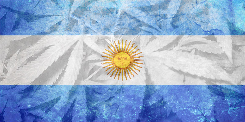 post-image-Argentina Just Became The Latest Country To Legalize Cannabis Oil