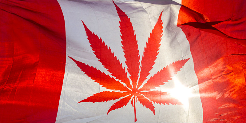 post-image-Rec Cannabis Will Be Legal In Canada By July 2018, Confirms Government