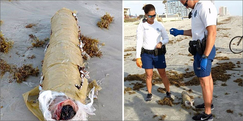 """post-image-Mysterious 10-Pound """"Giant Blunt"""" Washes Up On Florida Beach"""