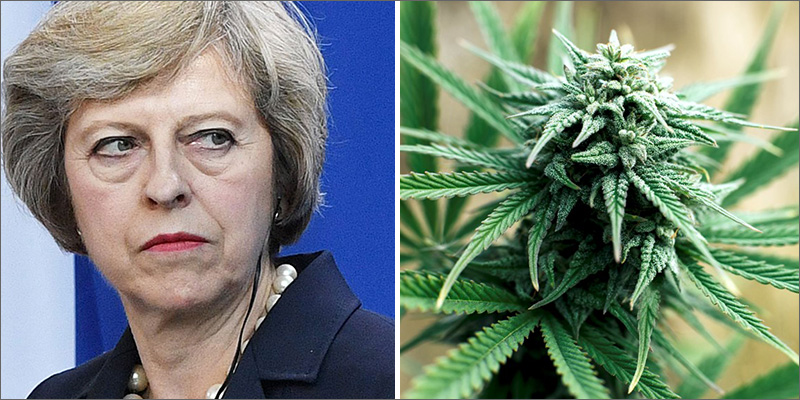 post-image-British Prime Minister Just Claimed Cannabis Leads To Heroin And Suicide