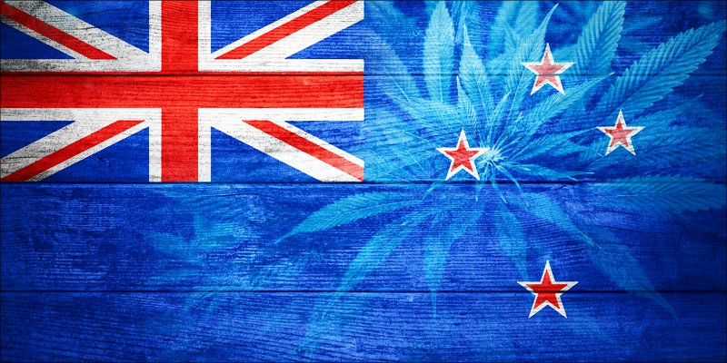 post-image-New Zealand Just Announced Plans To Remove CBD Restrictions