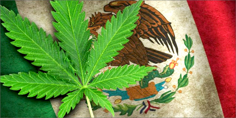 post-image-Mexico Just Legalized Medical Marijuana: But There's A Catch