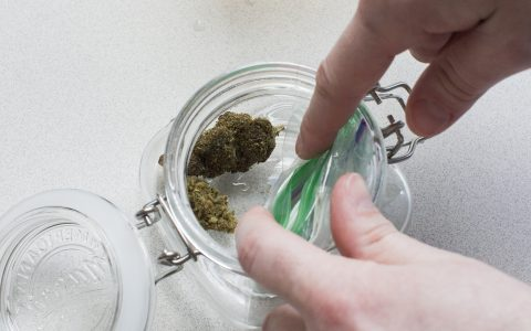 post-image-How to Re-Hydrate Dry Cannabis Buds