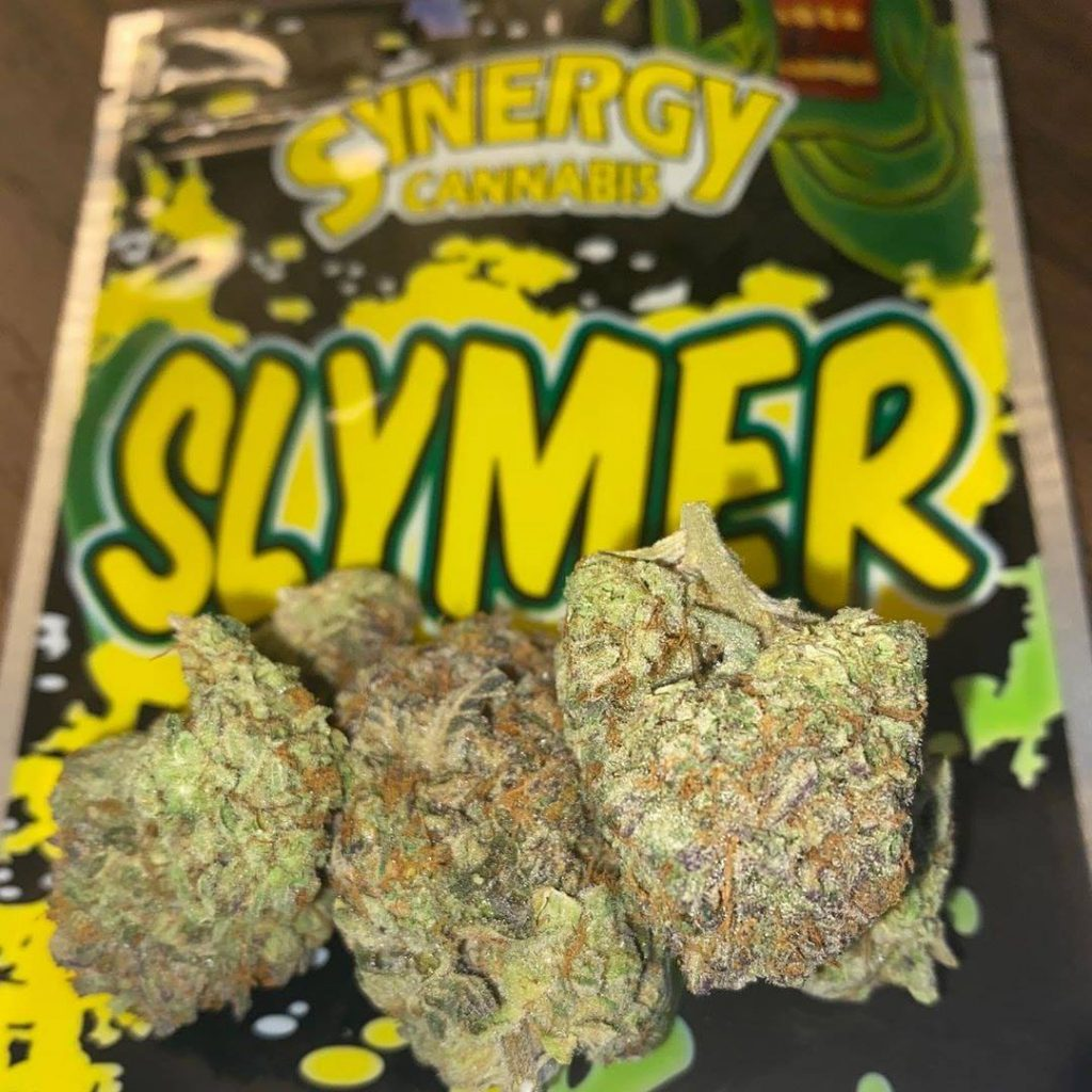 post-image-🔥🌿 Slymer Strain by Synergy 🔥🌿 Marijuana Strain Reviews